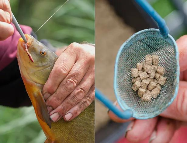 Float-Fishing-For-Tench-9 copy