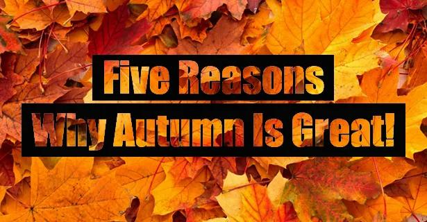 Five Reasons Why Autumn Is Great!