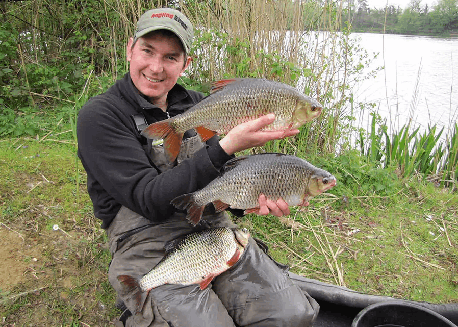 UK Specimen Roach Fishing - The Insiders Guide
