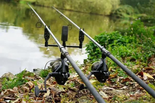 Autumn Fishing Tips: Your Guide to Fishing the Seasons