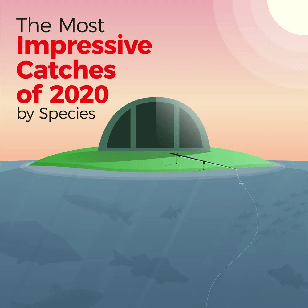 The Most Impressive Catches of 2020 by Species