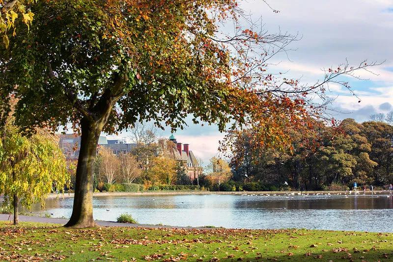 UK's Best Park Lakes & Urban Fishing Venues