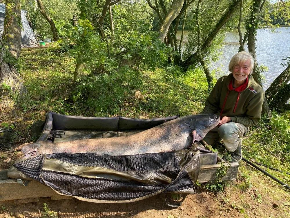 Native Wels Catfish in UK waters - with Martyn Page