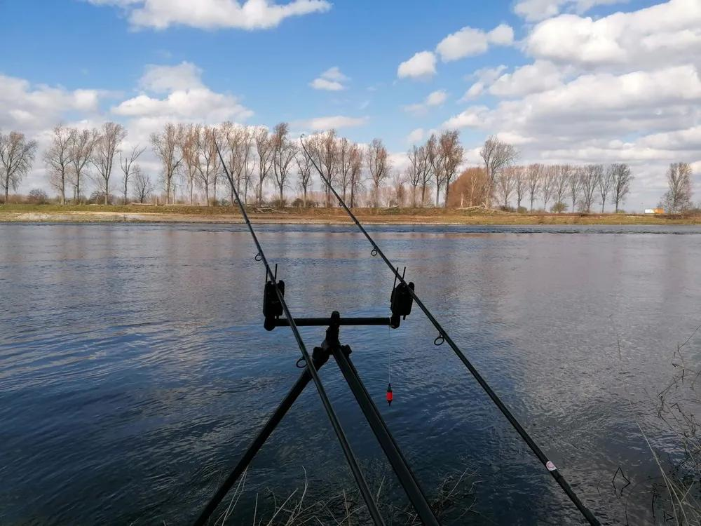 Springtime Angling in the Netherlands - with Ade Kiddell