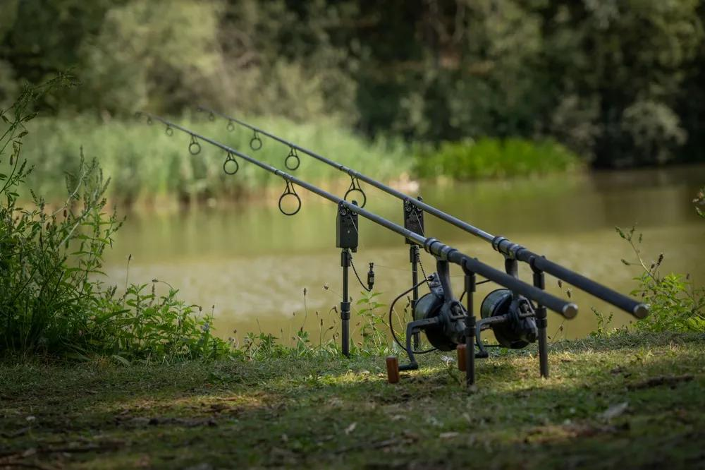 Summer Fishing Tips: Your Guide to Fishing the Seasons