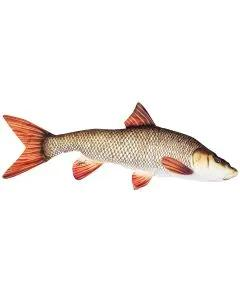 Gaby Fish Pillows The Barbel